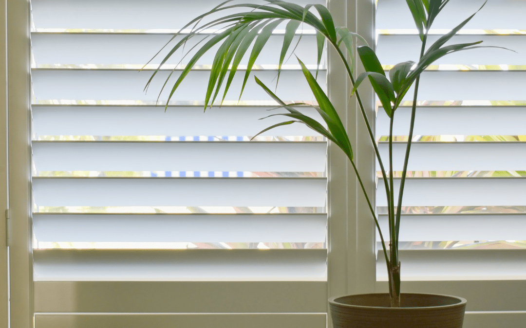 7 Reasons Why People Like Plantation Shutters In Melbourne